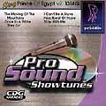 Playback! PRINCE OF EGYPT Vol. 2 - CD